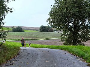 Die klassische Gassirunde für jedermann, ein asphaltierter Rundweg nahe der Ranch, eignet sich für den Morgenspaziergang bei jedem Wetter.